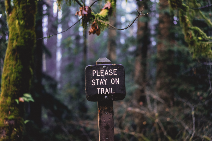 "Sign in Forest reading ""Please stay on Trail"""